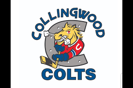 collingwood colts logo